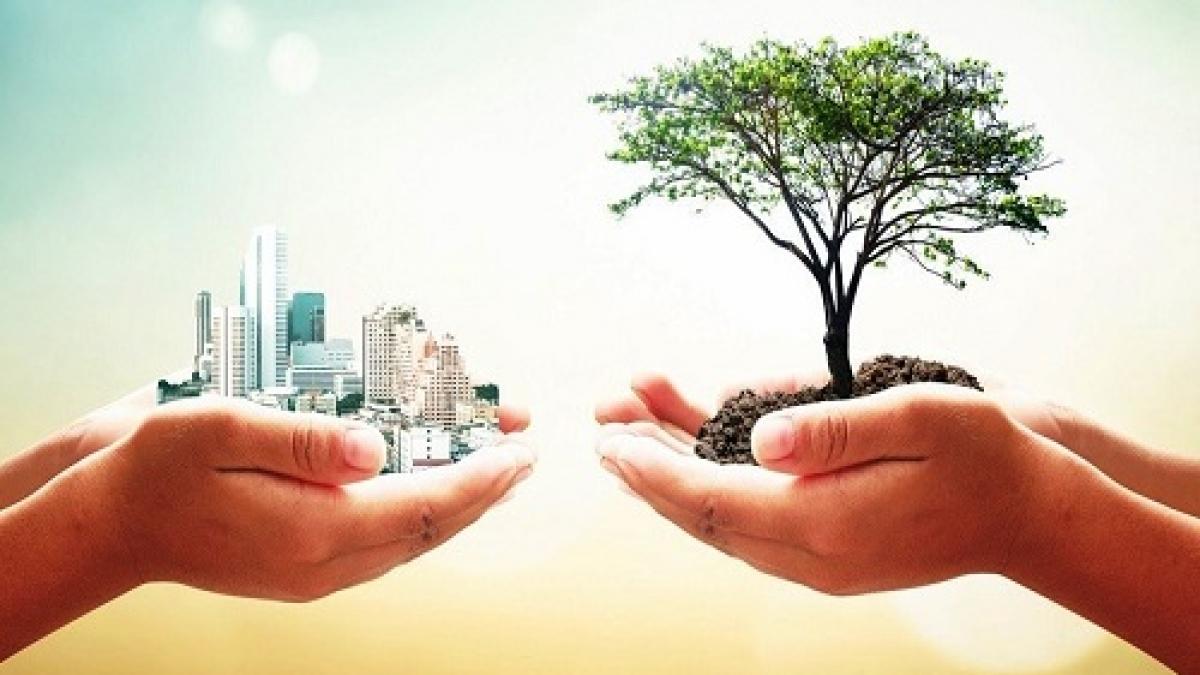 sustentabilidade-5